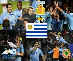 Puzle URU finalistou, Copa America 2011