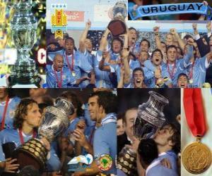Puzle Uruguay vítěz Copa America 2011