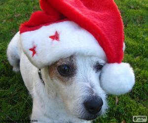 Puzle Vánoční pes