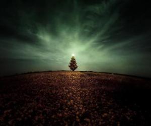 Puzle Vánoční strom v poli