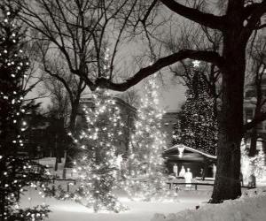 Puzle Vánoce v parku