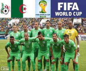 Puzle Výběr z Alžírska, Skupina H, Brazílie 2014