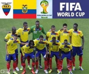 Puzle Výběr z Ekvádoru, skupina E, Brazílie 2014
