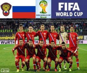 Puzle Výběr z Ruska, Skupina H, Brazílie 2014