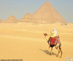 Puzle Velblouda před pyramid, pohřební památky starého Egypta