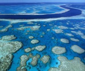 Puzle Velký bariérový útes, korálové útesy na celém světě největší. Austrálie.