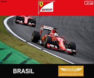 Puzle Vettel, 2015 Grand Prix Brazílie