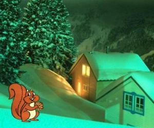 Puzle Veverka jíst ořechy na Štědrý den