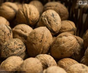 Puzle Vlašské ořechy ve skořápce