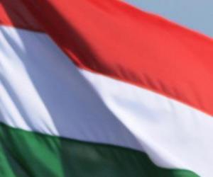 Puzle Vlajka Maďarska