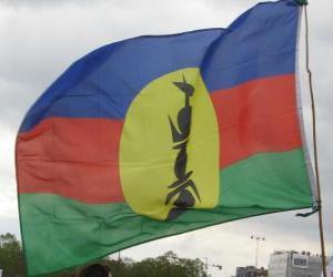 Puzle Vlajka Nové Kaledonie