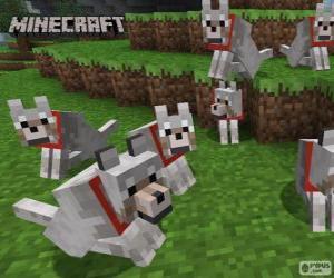 Puzle Vlci Minecraft