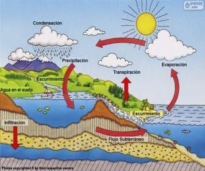 Puzle Vodní cyklus (es)