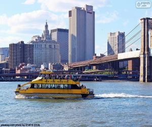 Puzle Vodní Taxi New York