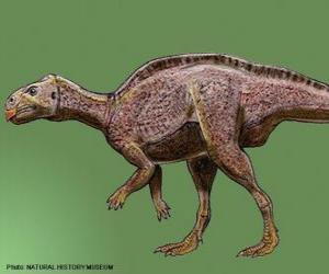 Puzle Zalmoxes žili před 65 miliony let