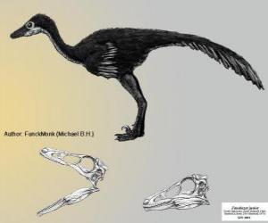 Puzle Zanabazar je jedním z největších známých troodontids, s lebka 272 mm