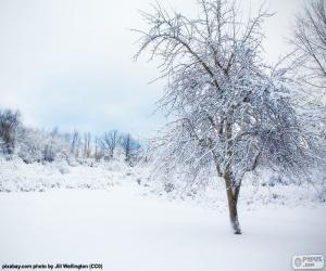 Puzle Zasněžený strom