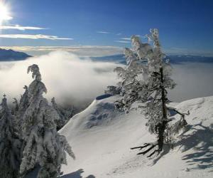 Zasněžené hory v poiana brasov rumunsko zmrazené písečné duny v
