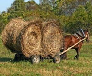 Puzle Zemědělec s koněm taženým koňmi