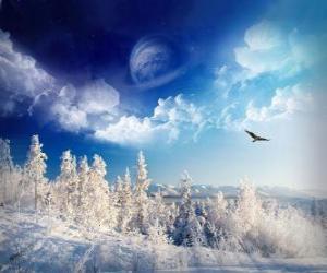 Skládačky zima