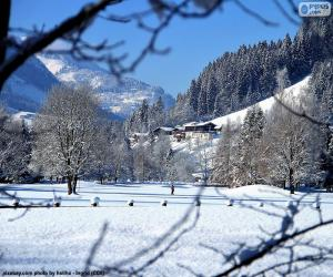 Puzle Zimní krajina