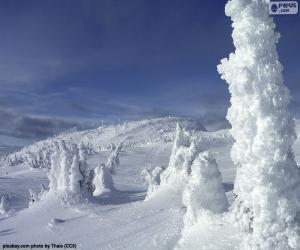 Puzle Zmrzlá krajina