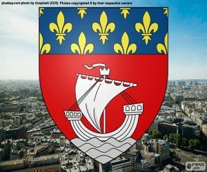 Puzle Znak města Paříže