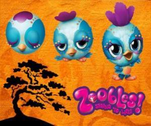 Puzle Zooble ptáček z Petagonia
