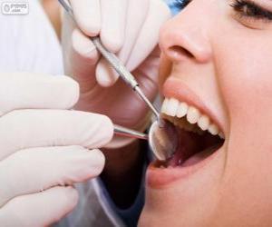 Puzle Zubní vyšetření