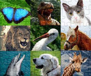 Puzzles Zvířat