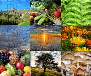 Puzzles Příroda